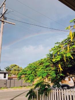 Rainbow after the rain!